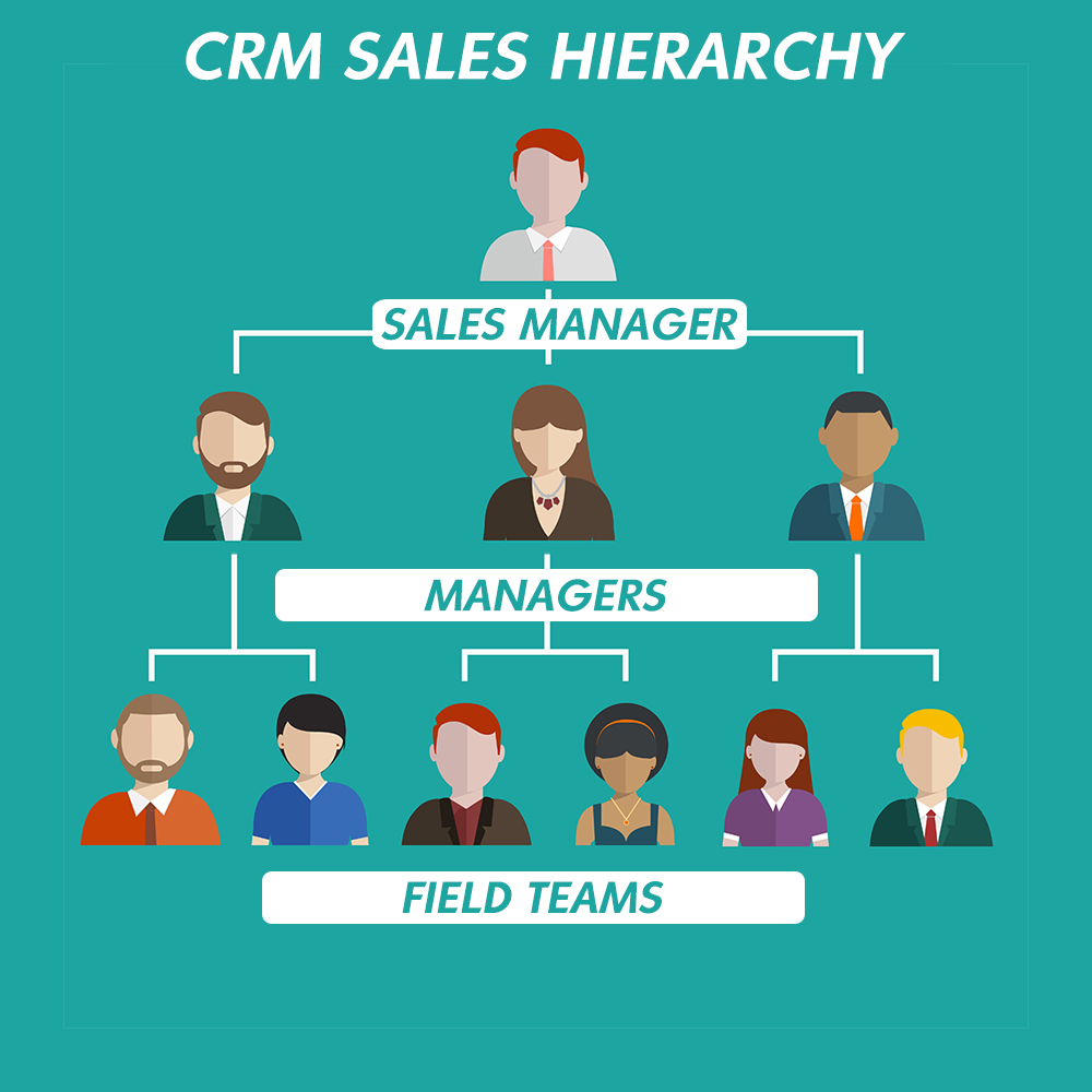 CRM Sales Hierarchy